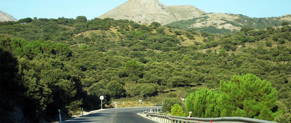 Дороги в Малаге